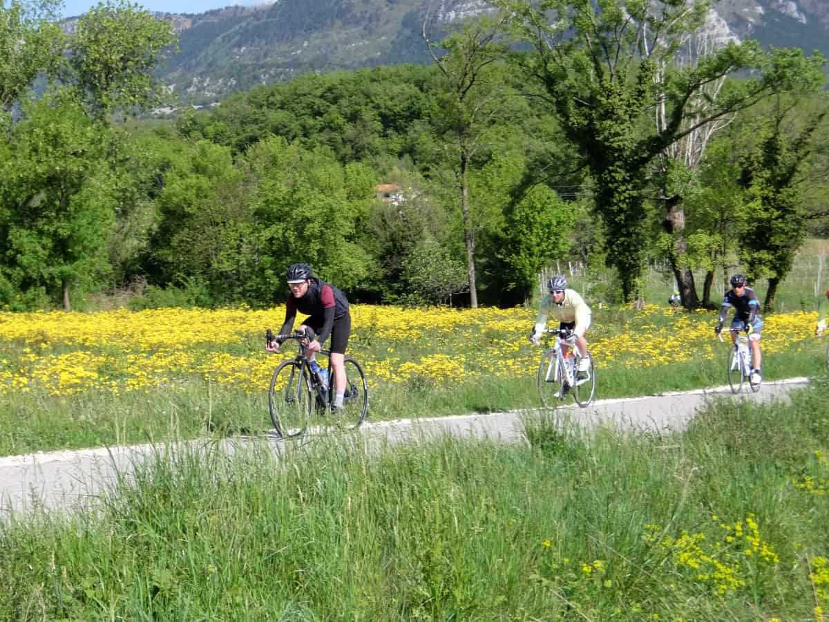 Easy road cycling in Slovenia. photo by RockVelo bike tours