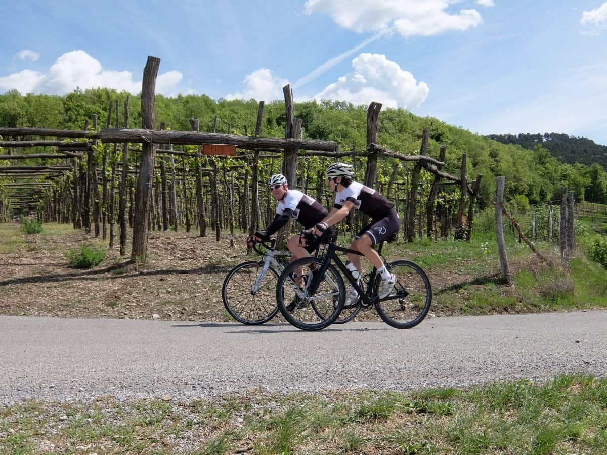 Two road cyclists in the vineyards of Vipava valley. RockVelo bike tours Slovenia.